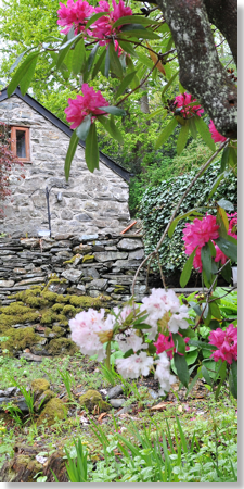 Holiday Cottages - Vale of Ffestiniog - North Wales
